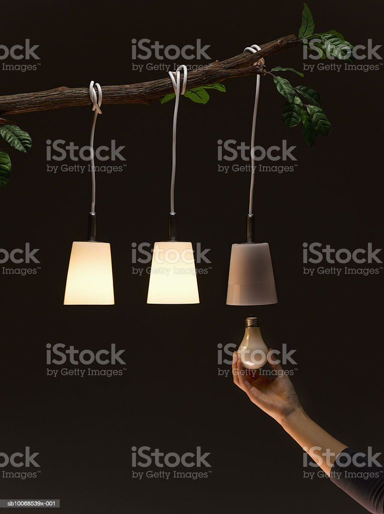 Woman replacing light bulb hanging on tree royalty-free stock photo