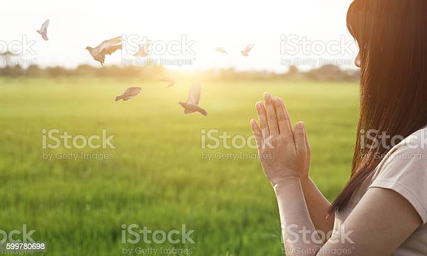 Photo of Woman respect and pray on nature background