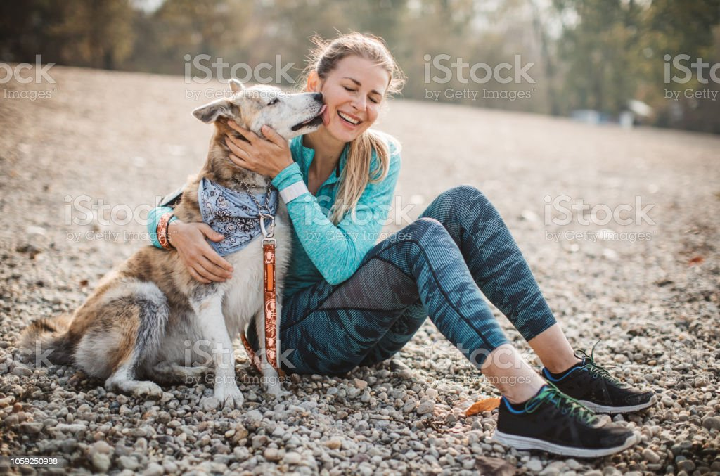 Woman resting on beach with dog stock photo