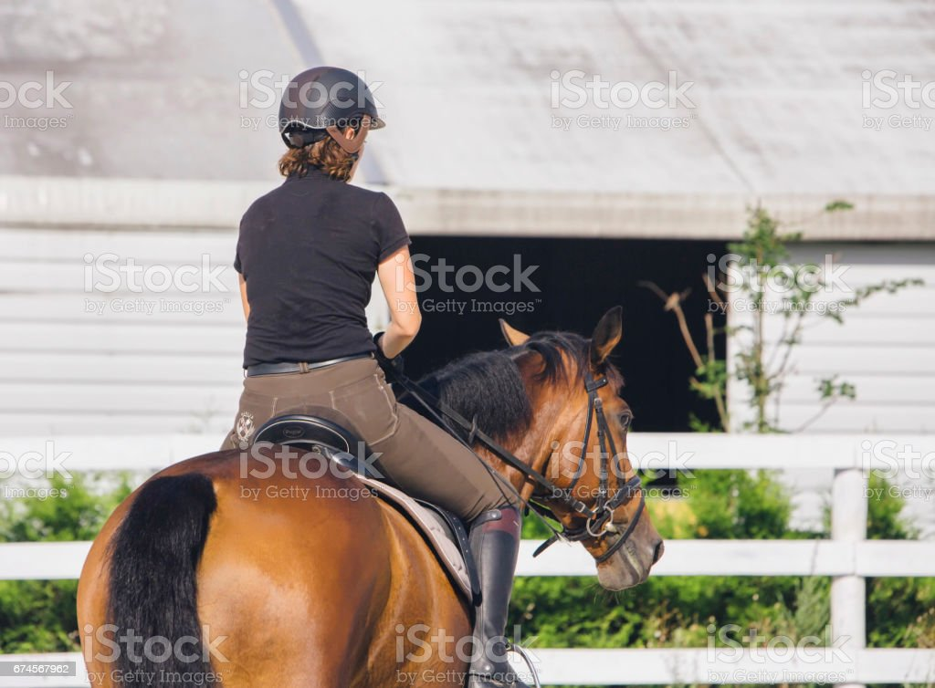 Woman Riding a Horse in Jumper Ring stock photo