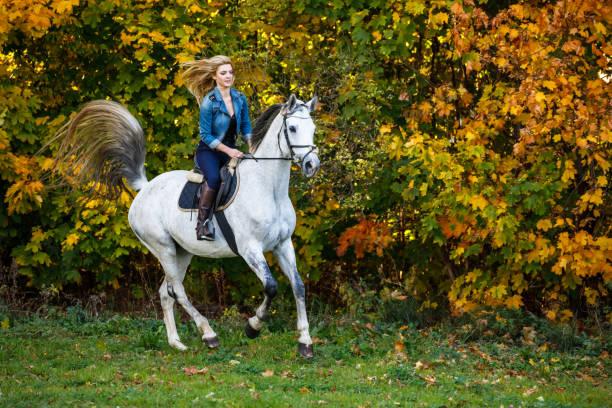Woman riding a horse in park picture id1063806636?b=1&k=6&m=1063806636&s=612x612&w=0&h=jwkcn qpfccaeccwjfuyztomtl0pwealbo0zz3dl7ai=