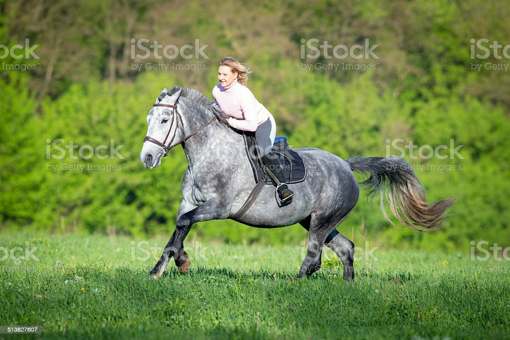 Woman riding a horse on the field stock photo