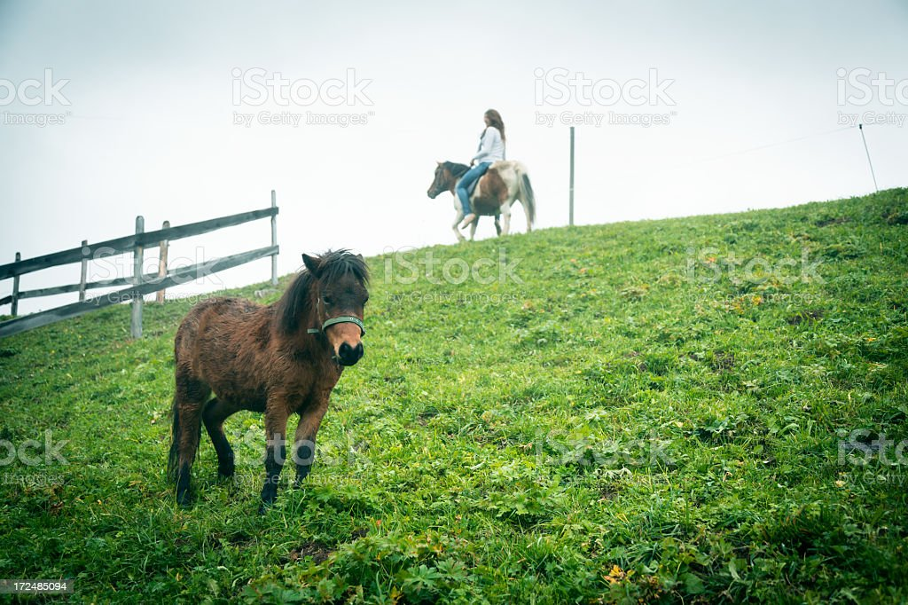 woman riding a pony on her farm royalty-free stock photo