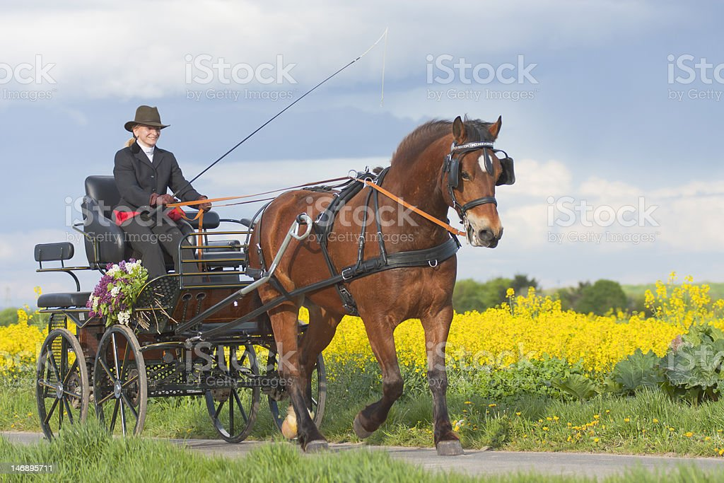 woman riding carriage stock photo