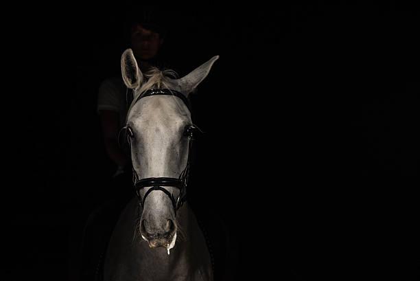 frau reiten pferd - farbe gegen schimmel stock-fotos und bilder