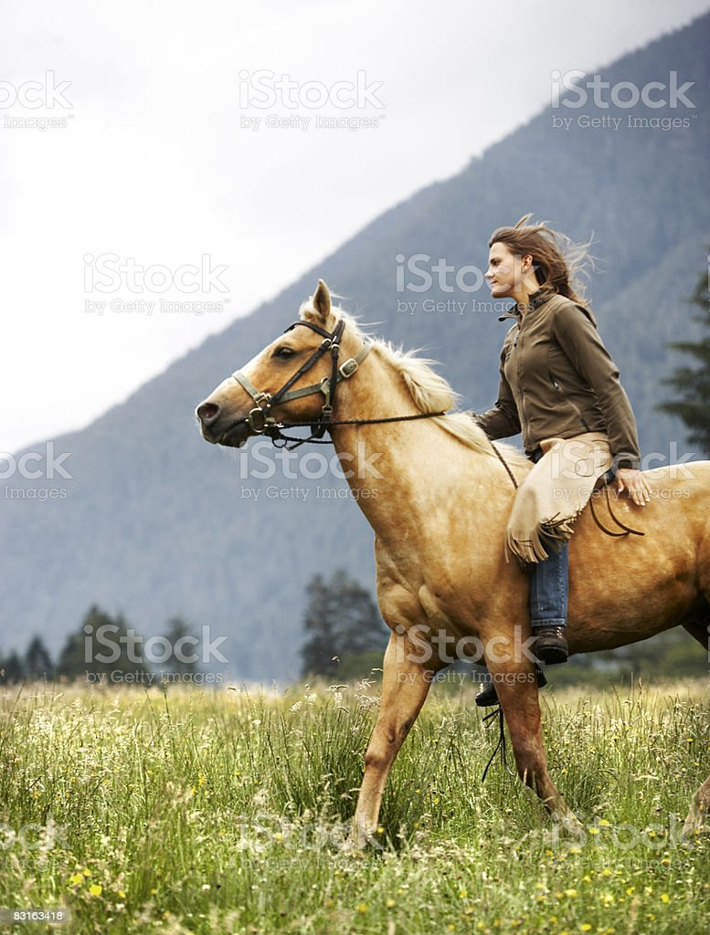 Woman riding horse through field.  royaltyfri bildbanksbilder
