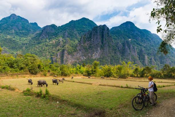 frau fährt mountainbike auf schotterpiste in landschaftlich reizvoller landschaft rund um vang vieng backpacker reiseziel in laos asia felsen gipfel grünen tal - vang vieng stock-fotos und bilder
