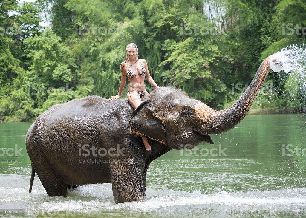 女性の乗馬では、象、トロピカルレインフォレスト ストックフォト