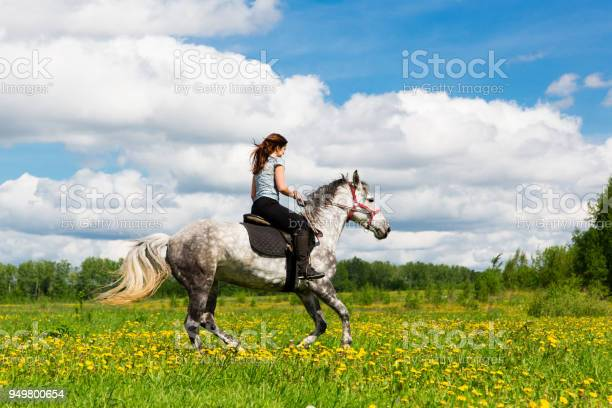 Woman riding on grey horse in the field picture id949800654?b=1&k=6&m=949800654&s=612x612&h=4bqjada0lt7wargmgkbhbalcjt2l2erkfw33 3gbzdw=