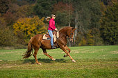 side view 45 years old sporty woman riding her beautiful horse in gallop over meadow outdoors on sunny autumn day