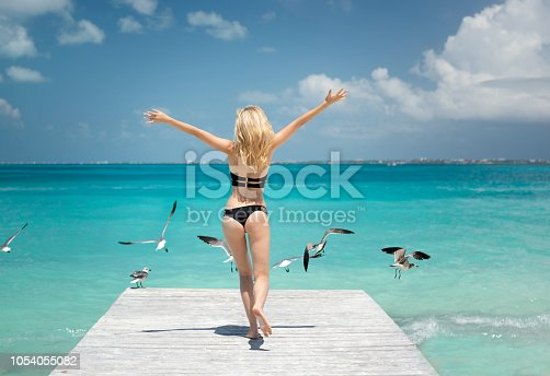 Woman running off a pier on vacation with Seagulls flying, Cancun, Mexico. Nikon D810. Converted from RAW.