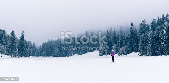 484750230 istock photo Woman running on winter trail, fitness inspiration and motivation 924836002