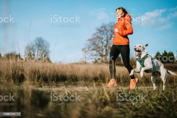 Woman running outdoors with pet dog picture id1098205722?b=1&k=6&m=1098205722&s=612x612&h=gfdoxw8z f1d4yczbr dcztesyi0halaceeeso gzf0=