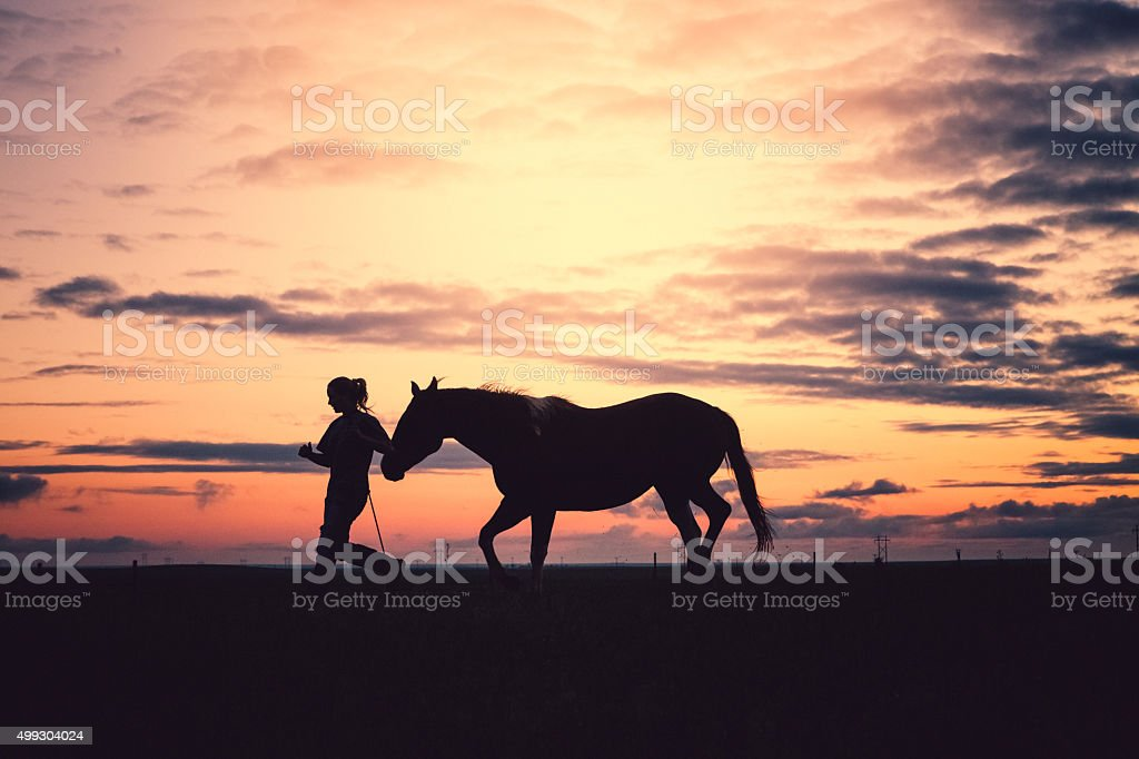 Woman Running & Training With Horse At Sunset stock photo