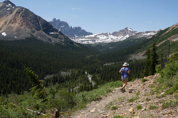 During our July, 2017 trip, my wife and I ran along the rocky Portal Creek Trail towards the jagged wall of the 3,112 meter high Mount Erebus in the distance.