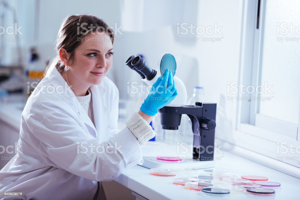 woman scientist looking through a microscope in laboratory stock photo