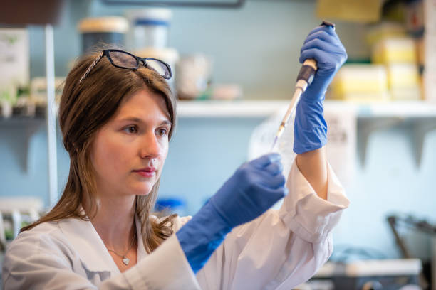 Woman scientist performing gene editing with crisper cas9 system Woman researcher in biotechnology laboratory pipetting genetic material animal testing stock pictures, royalty-free photos & images