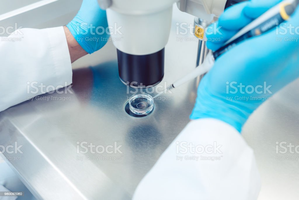 Woman scientist working with pipette in laboratory stock photo