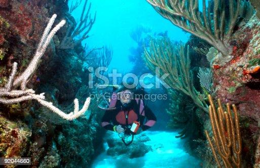 istock Woman Scuba diver in Roatan 92044660
