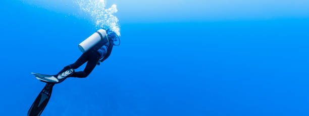 Woman scuba diving in Rangiroa Atoll, French Polynesia Woman scuba diving in Rangiroa Atoll, French Polynesia indo pacific ocean stock pictures, royalty-free photos & images