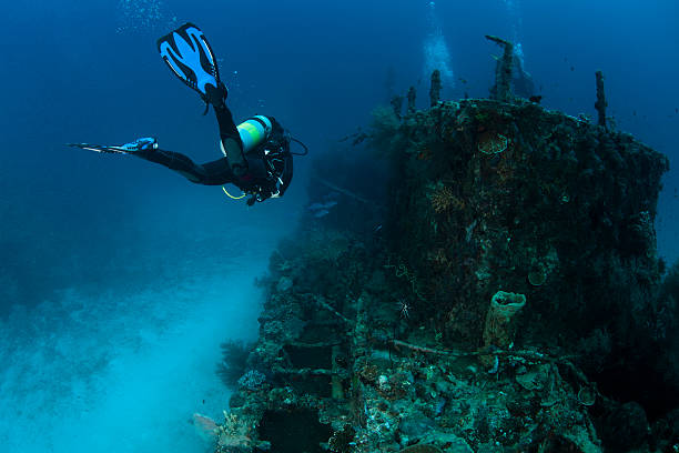 woman scubadiving - shipwreck stock pictures, royalty-free photos & images