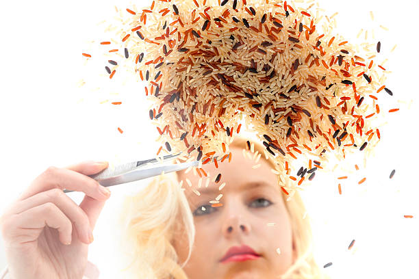Woman selecting geneticly modified rice with tweezers​​​ foto