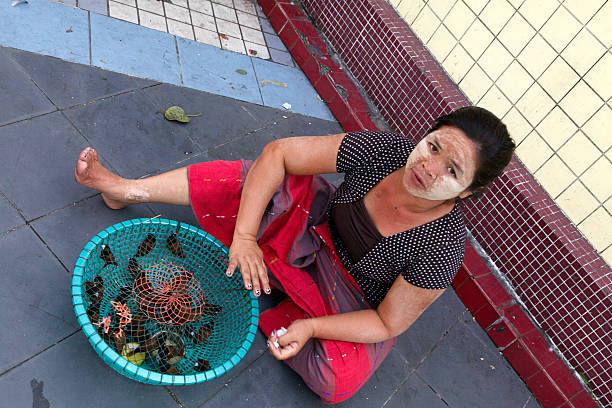 Woman selling birds for offerings Sule Pagoda stock photo