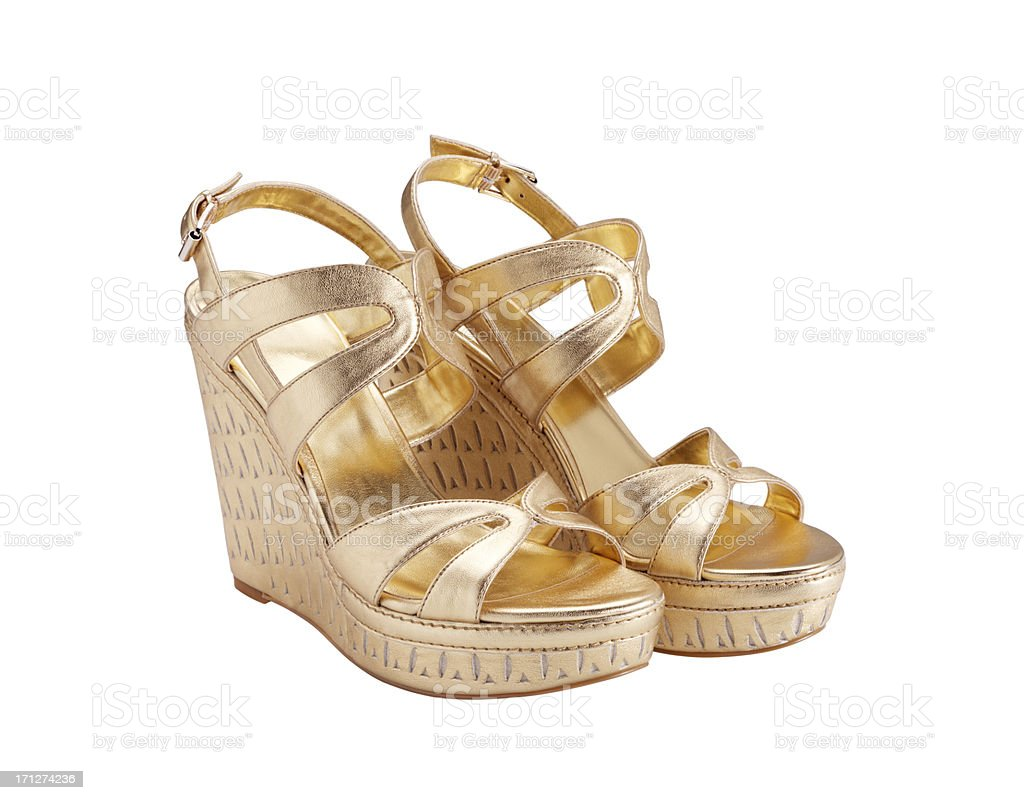 Woman Shoe (Click for more) royalty-free stock photo