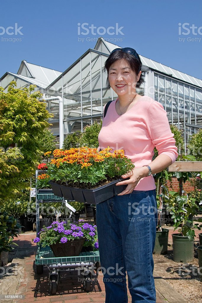 woman shopping for flowers royalty-free stock photo
