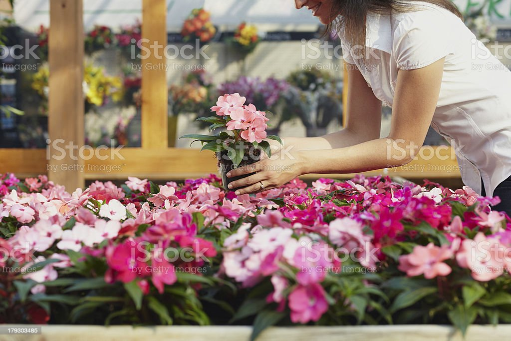 woman shopping in garden center stock photo