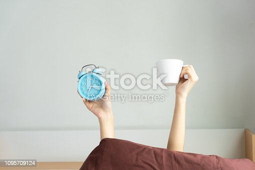 Woman showing arm raised up holding coffee cup and blue alarm clock behind duvet in the bed room, Young girl with two hands sticking out from the blanket. wake up with fun in morning concept.