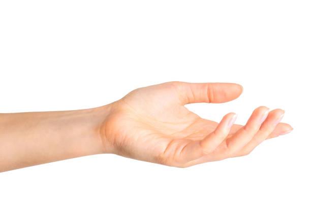 Woman showing open hand taking or showing something picture id1078627446?b=1&k=6&m=1078627446&s=612x612&w=0&h=0hrlu5b7adfwzo51wucupm3oaeybquvipfa0f aj3fm=