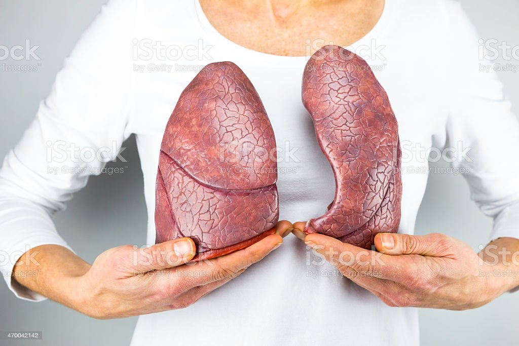 Woman showing two lungs in front of chest stock photo