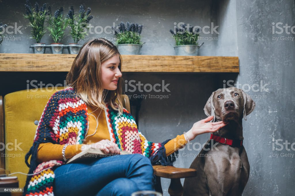 Woman sitting in cafe, reading book and petting dog stock photo