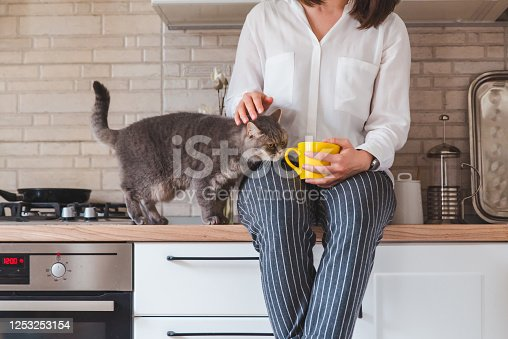 539672394 istock photo woman sitting on kitchen table with cat drinking tea from yellow mug 1253253154