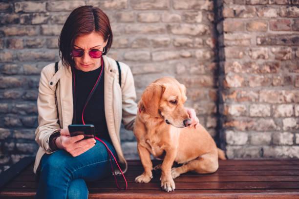Woman sitting on the bench with dog and using phone picture id1153927363?b=1&k=6&m=1153927363&s=612x612&w=0&h=jo1mg8d ejaajjto3oekt3wuzvj1dsvwdrxt v1gvse=