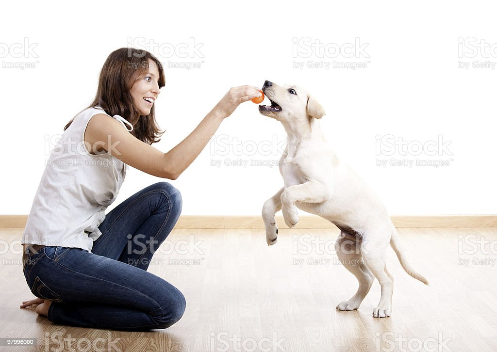 Woman sitting on the floor playing ball with a cream dog royalty free stockfoto