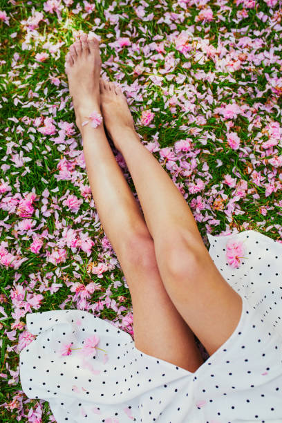 Woman sitting on the grass covered with pink cherry tree petals and flowers stock photo