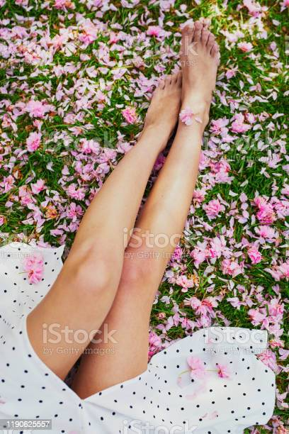 Woman sitting on the grass covered with pink cherry tree petals and picture id1190625557?b=1&k=6&m=1190625557&s=612x612&h=xbgftm0zctewcrfh0jxmmhcutpj9wbtqrlus yd4asq=