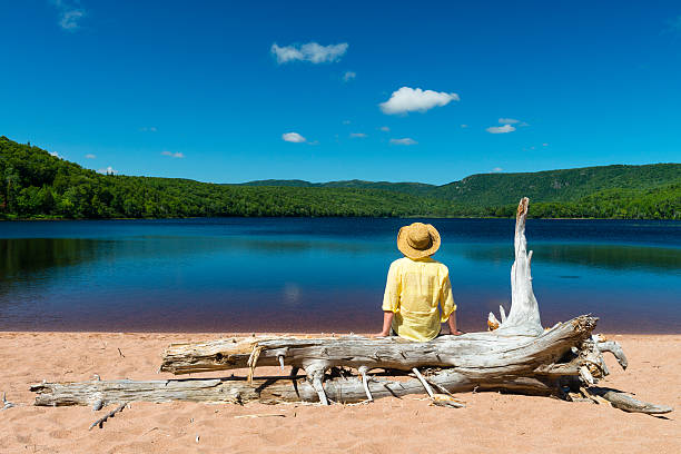 に座る女性の体幹の木とを見ている美しい湖 - 自然旅行 ストックフォトと画像