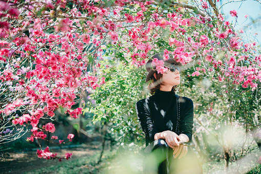 486439381 istock photo Woman sitting surrounded by cherry blossoms 1220365593