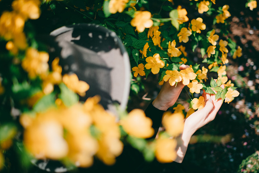 486439381 istock photo Woman sitting surrounded by flowers 1220396242