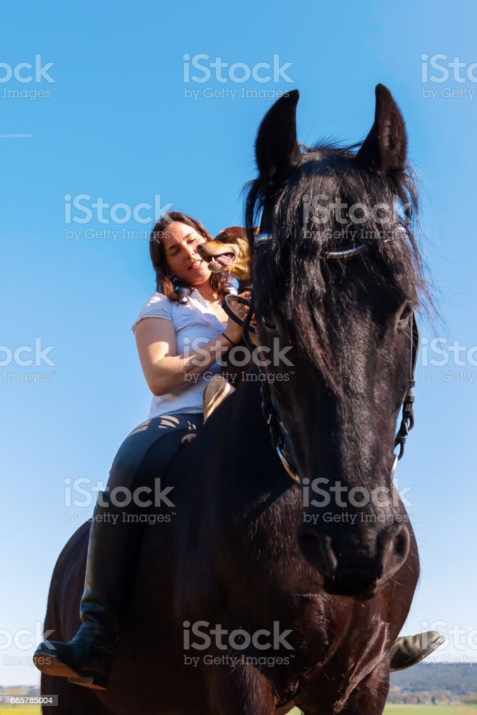 woman sitting with dog on a Friesian horse royalty-free stock photo