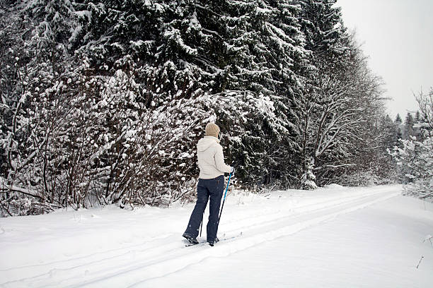 Woman Skiing in Winter Forest stock photo