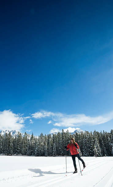 """Woman skiing """"Woman crosscountry skiing in the mountainsFor similar pictures, please click for:My Winter Sports & Recreation Lightbox"""" kananaskis country stock pictures, royalty-free photos & images"""