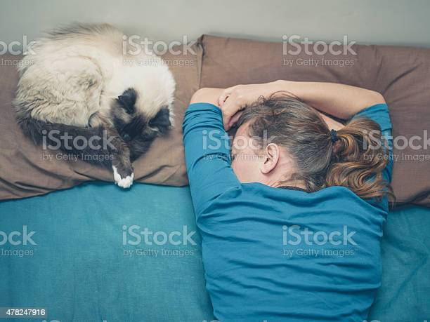 Woman sleeping in bed with cat picture id478247916?b=1&k=6&m=478247916&s=612x612&h=iakjddbgwhhdjpvdfvh8uuaftu8ss4jiukya5cwjk7k=