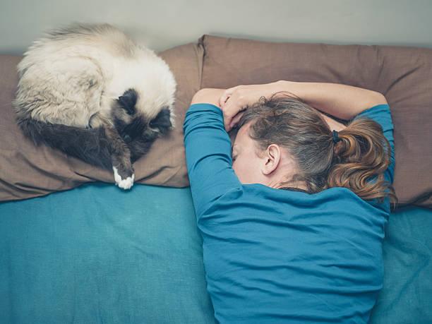 Woman sleeping in bed with cat picture id478247916?b=1&k=6&m=478247916&s=612x612&w=0&h=c8jcifsx0zcdiqwau 8uavkg91mu13x5 1mvfw1 b6q=