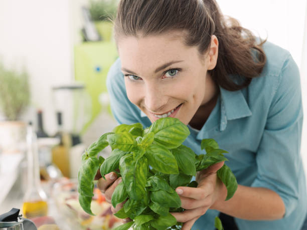 woman smelling fresh basil at home - basil stock photos and pictures