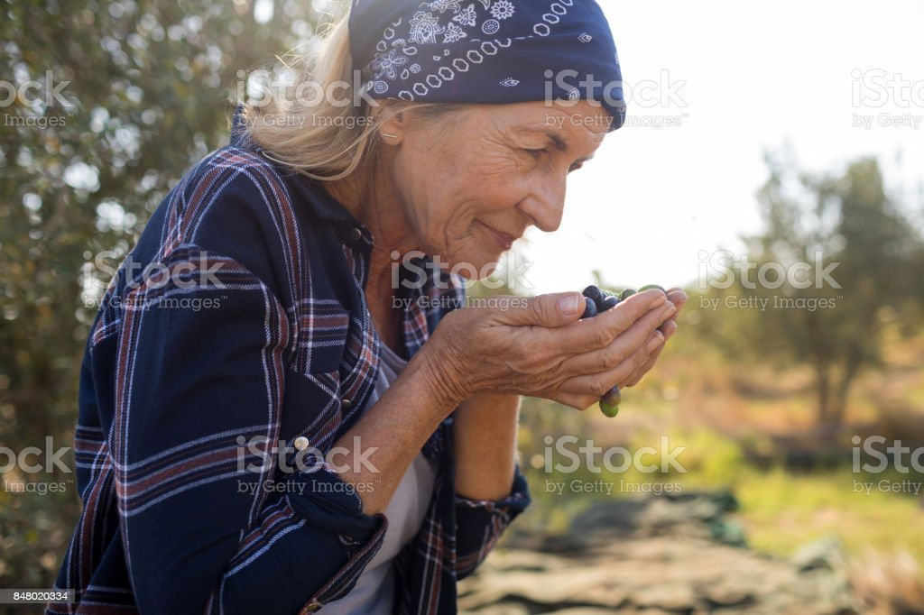 Woman smelling fresh olives stock photo
