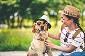 Young woman and her labrador dog having fun in nature with hats and sunglasses